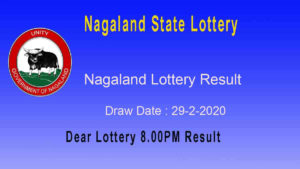 Nagaland State Dear Ostrich Lottery 29.2.2020 Result 8.00pm - Sambad